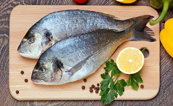 Metais pesados encontrados em peixes prejudicam a saúde e dificultam absorção de ômega 3